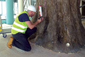 hand painted fabricated trunk tree