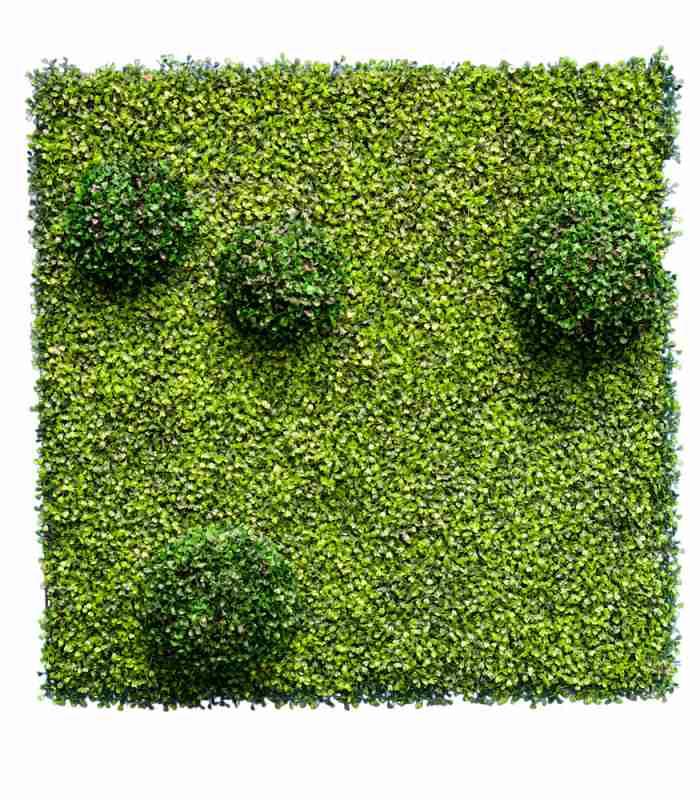 artificial-green-wall-orkney-dubai