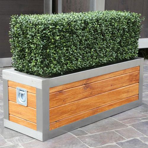 custom topiary hedges sizes