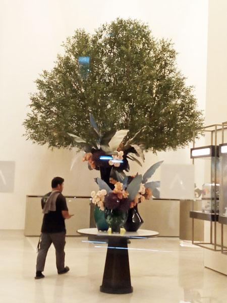Fountain Views Downtown - custom olive tree
