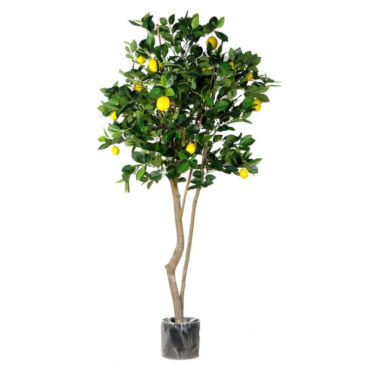artificial lemon fruit tree dubai