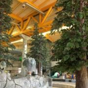 fake pine tree installation