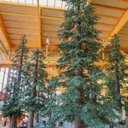 fake pine trees