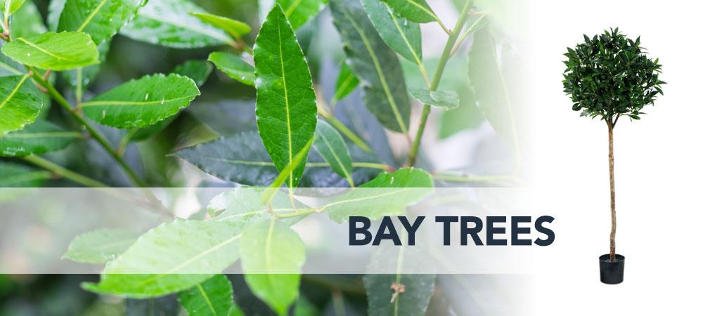 Shop artificial Bay Trees Dubai